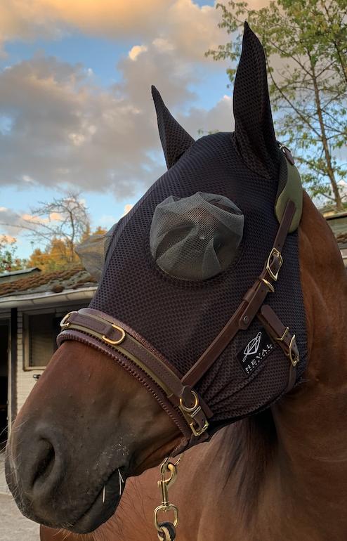 NOFLYNOCRY Fliegenmaske Meshy Feshy mit Augen- und Nasennetz  mit 75% UV Blocker